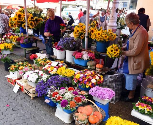 Cameron-Croatia-Zagreb-Flowers