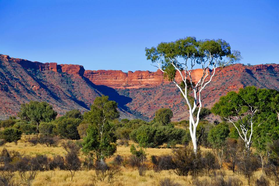Eastern Central Australian outback