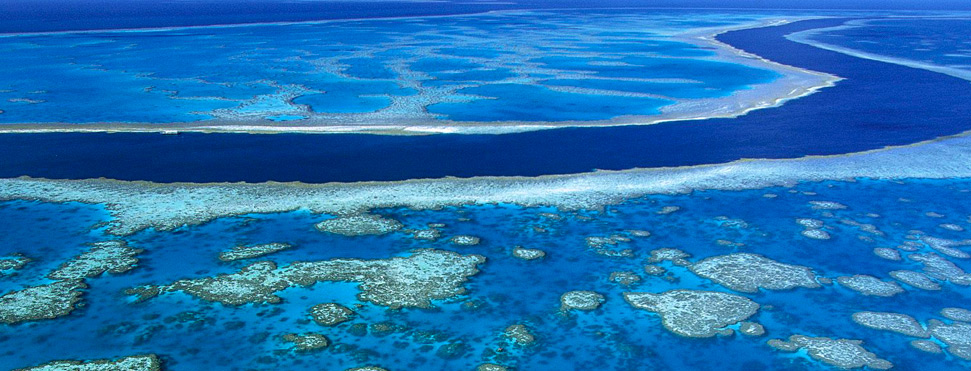 Great Barrier Reef, Australia1