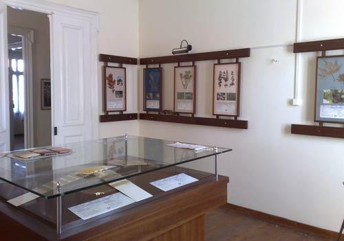 Iris Museum