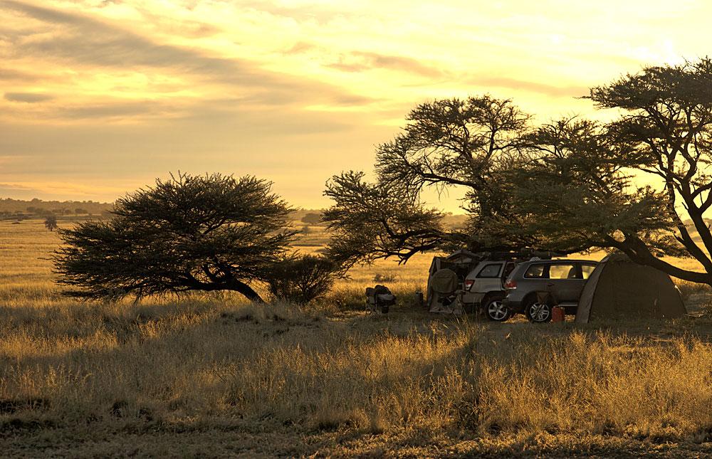 Kgalagadi Transforntier Park, Botswana