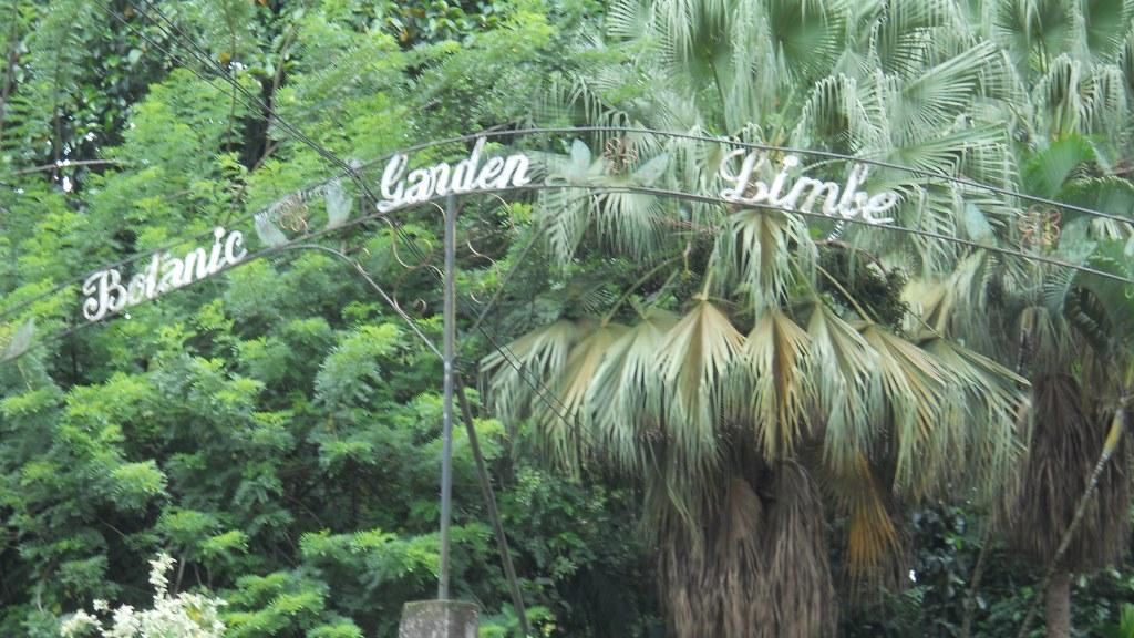 Limbic Botanical gardens, Cameroon