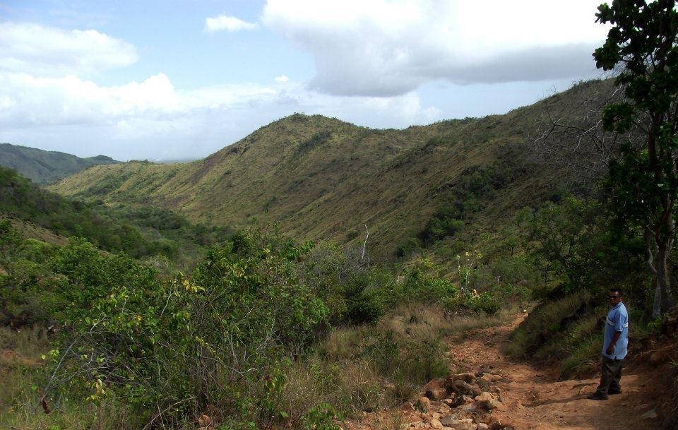 Macushi tribe, Guyana