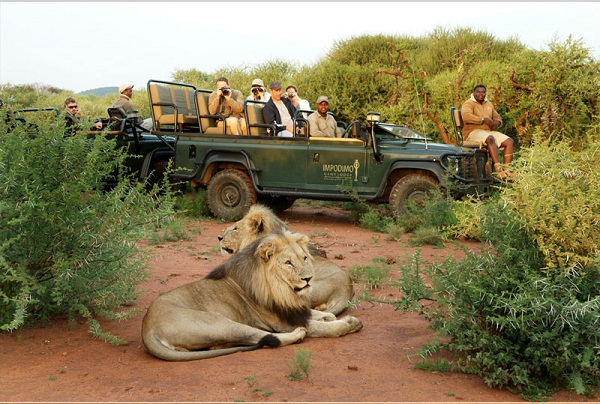 Madikwe Game Reserve Zeep Safari
