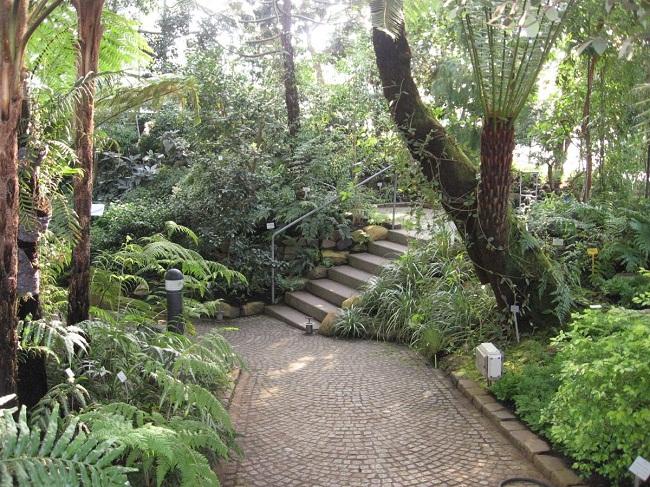 Old Botanic Garden