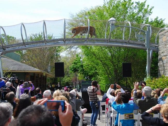 Philadelphia Zoo Inside