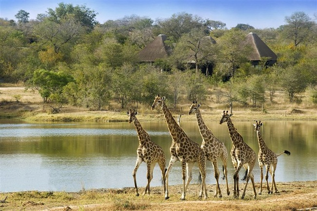 Sabi Sand Private Game Reserve