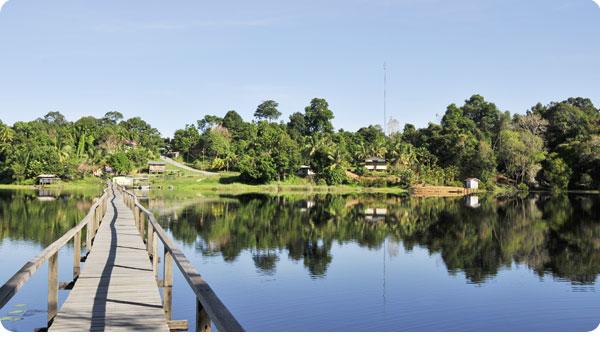 Tasek Merimbun Lake, Brunei