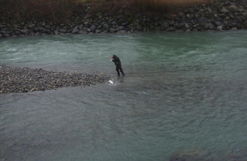 Vedder  Chilliwack River Fishing