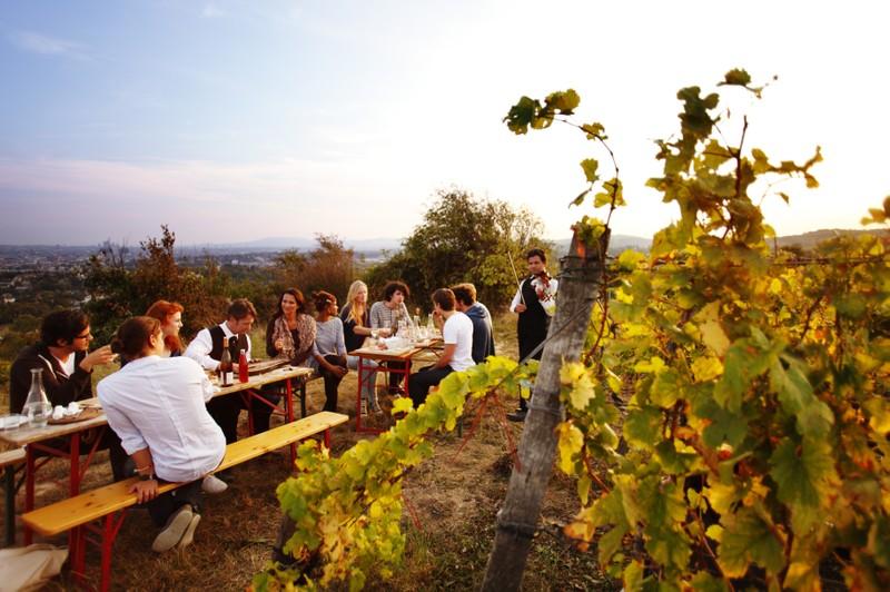Viennese Vino
