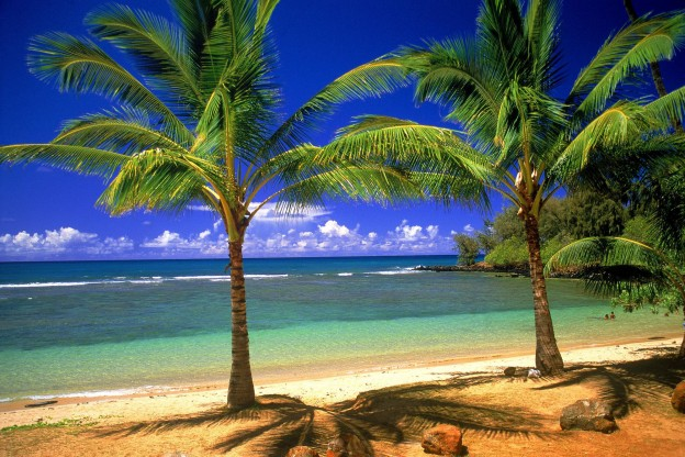 holiday in heaven summer in paradise mac background nature