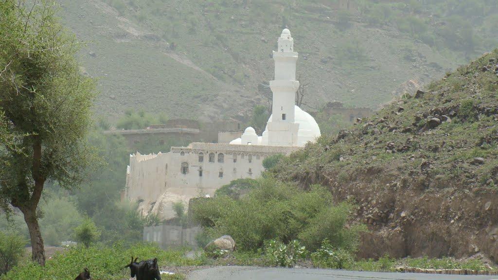 Ahmed Bin Alwan