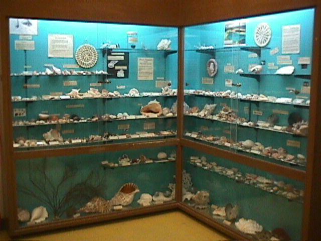 Alele Museum, Marshall Islands