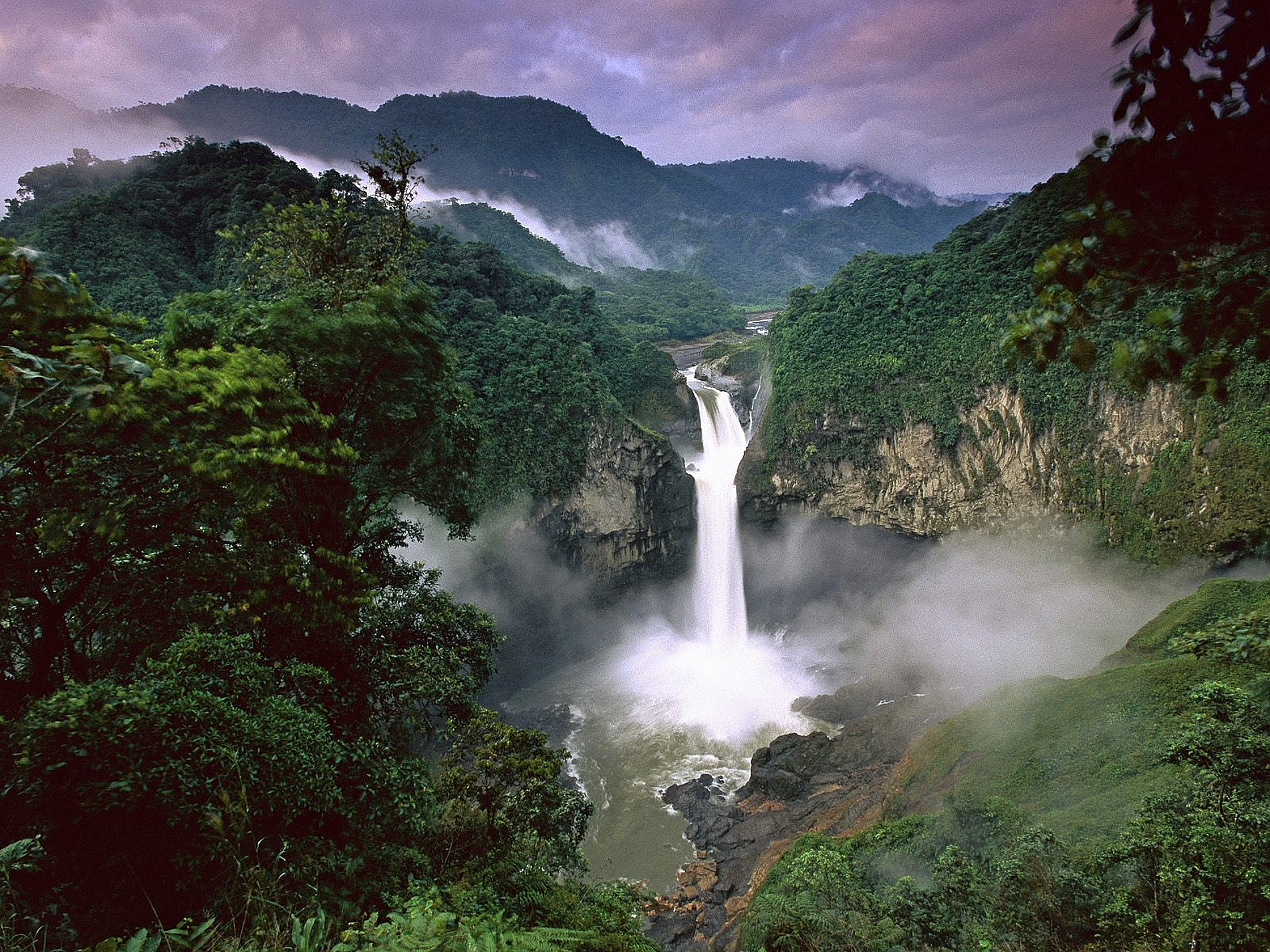Amazon jungles Colombia
