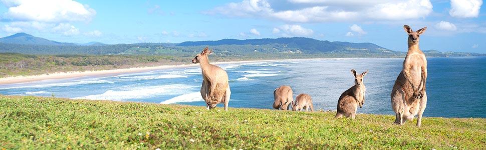 Aussie House Swap, Australia