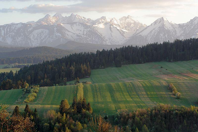 Biebrza National Park, Poland