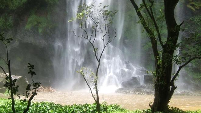 Bui and Bia National Parks, Ghana