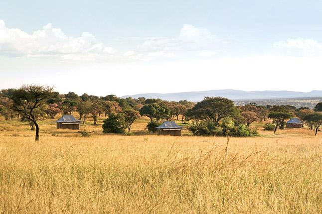 Grumeti Reserves Images