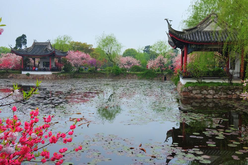 Liyuan_Garden