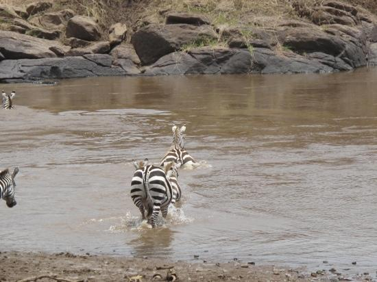 Olypunyata Swamp Masai Mara Reserve