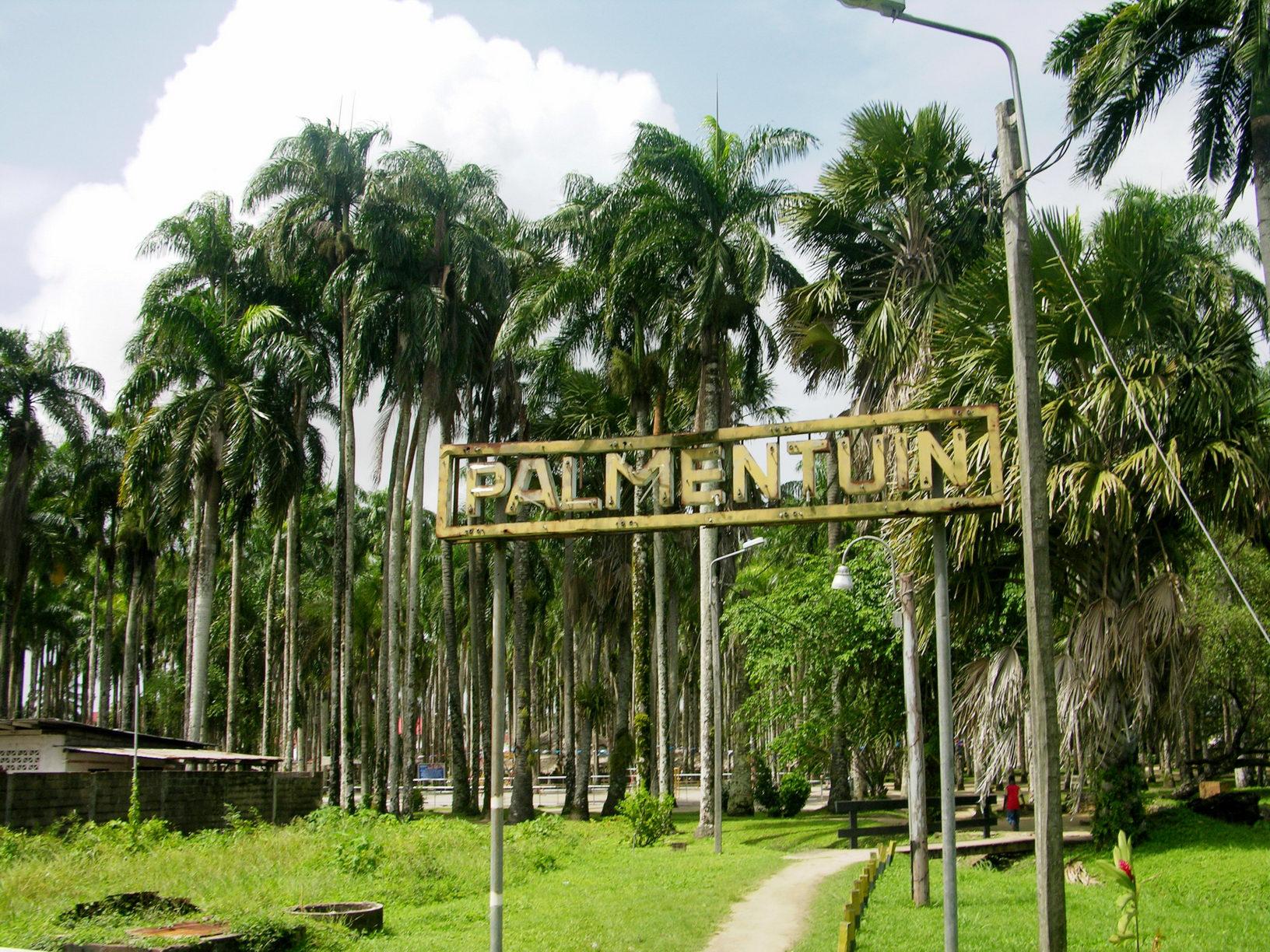 Palmentuin Park, Suriname
