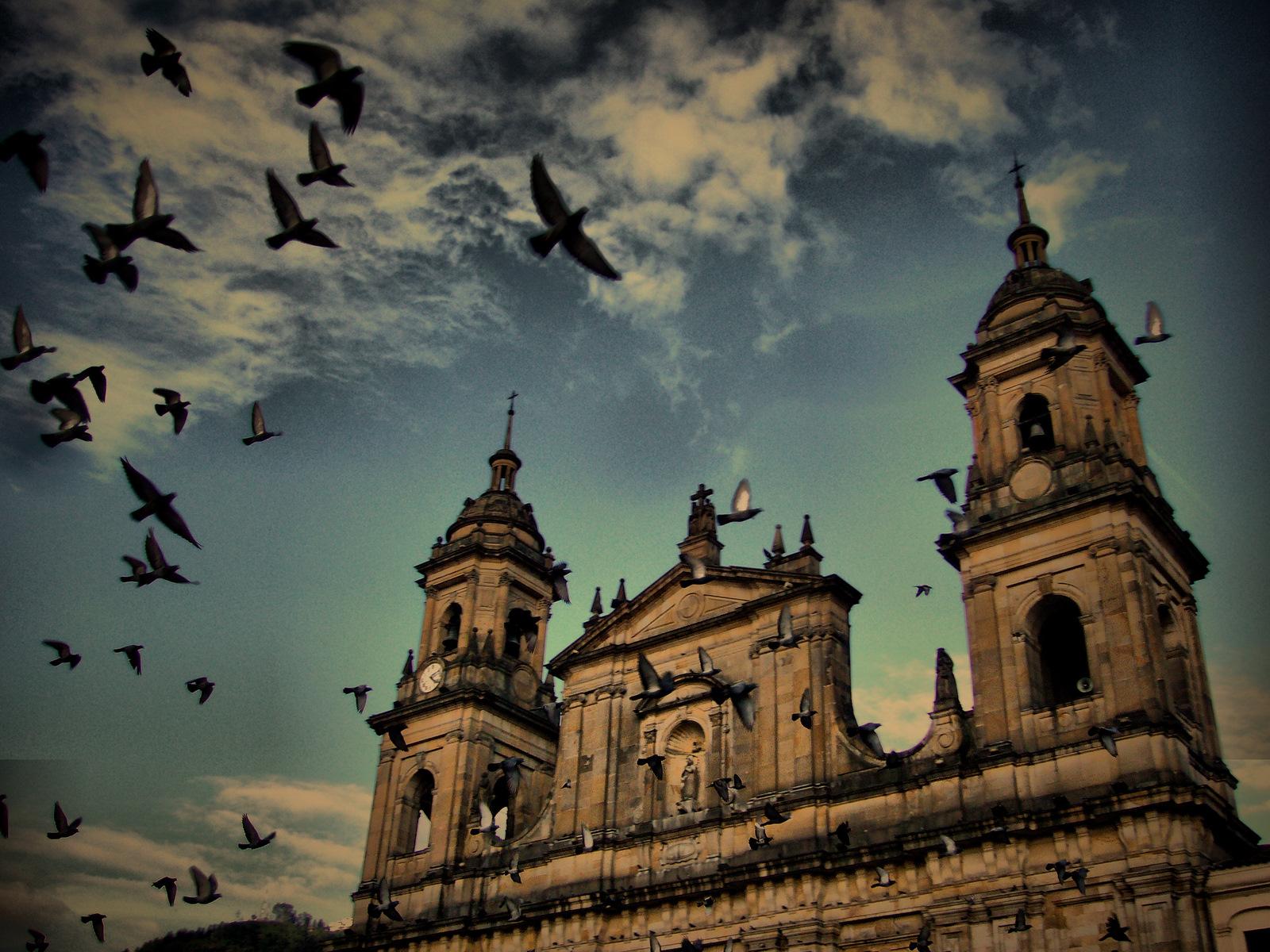Primatial cathedral of Bogota.