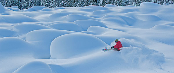 Single Skiers