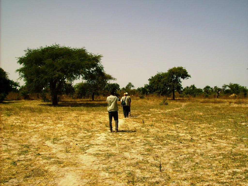 Tanji reserve, Gambia