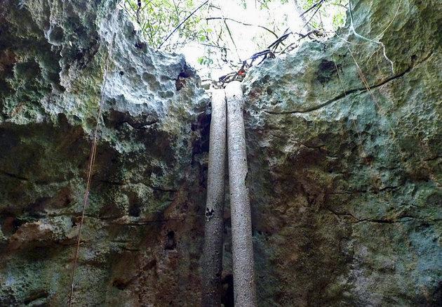 Varadero Ecological Park