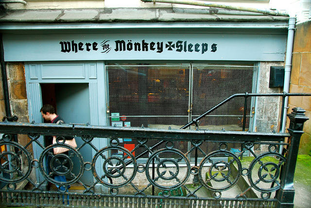 Where the Monkey Sleeps