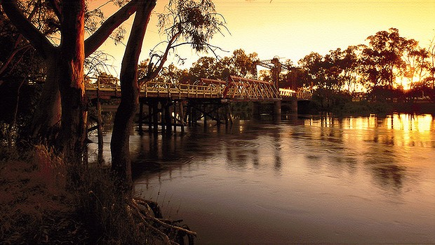 banks of the Murray River