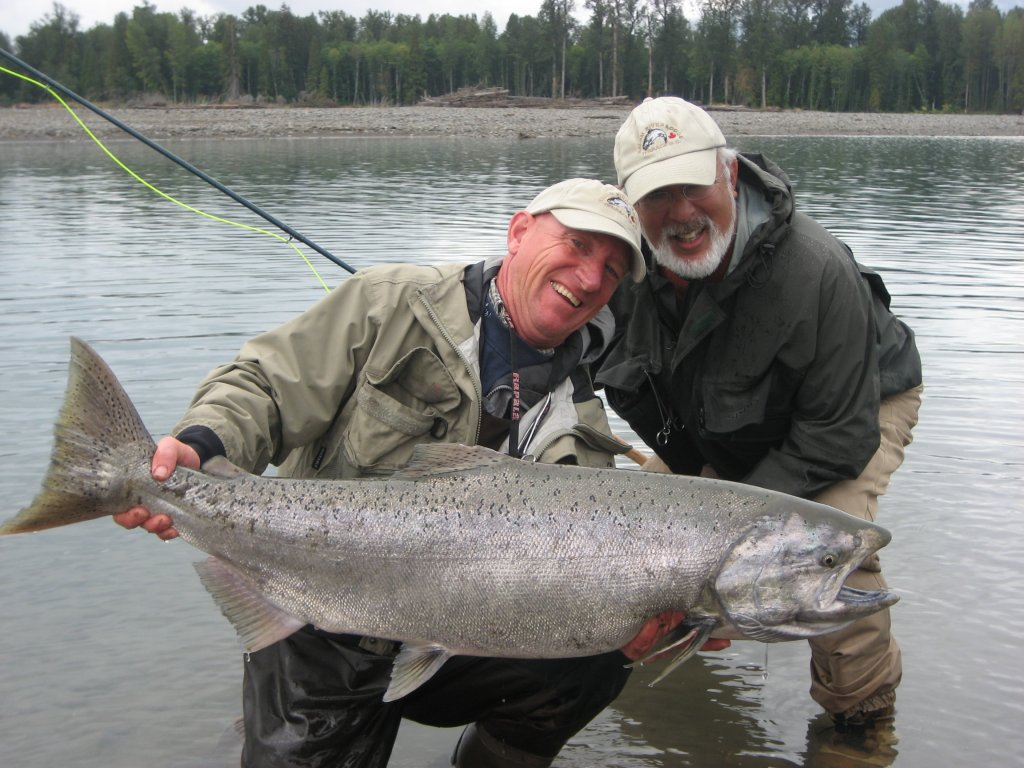 chinook fish