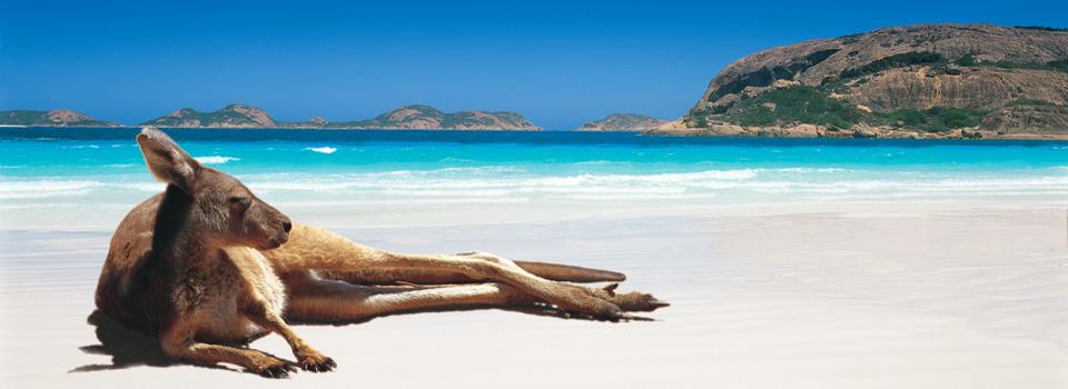 relaxing in Australia